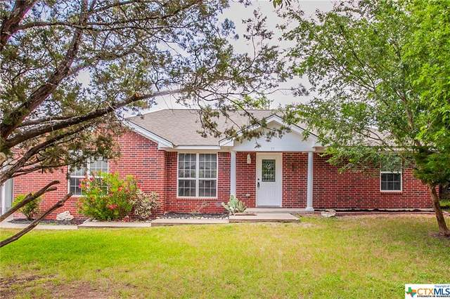 35 Blue Roan Drive, Belton, TX 76513 (MLS #411344) :: The i35 Group