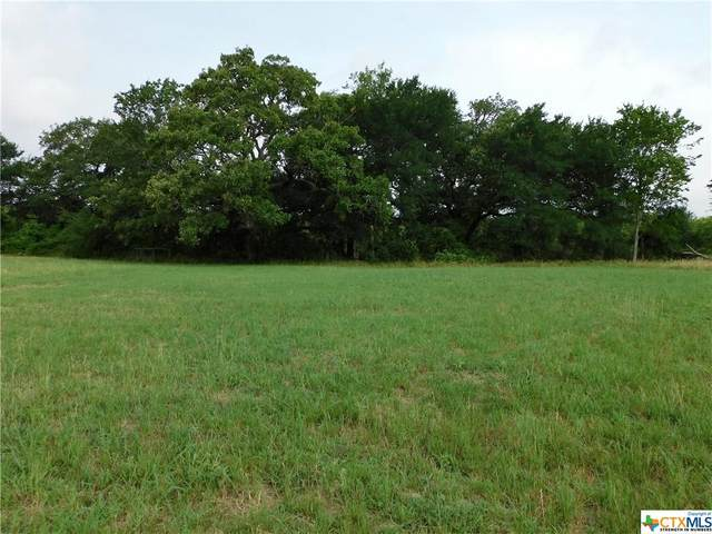 7619 Fm 713, Dale, TX 78616 (MLS #411354) :: The Zaplac Group