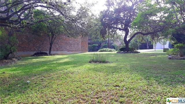 23 Westcourt Lane, San Antonio, TX 78257 (MLS #411382) :: Kopecky Group at RE/MAX Land & Homes