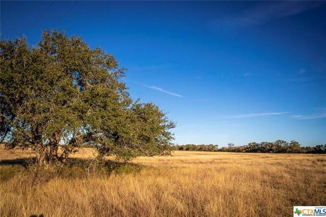 851 Branch Road, Geronimo, TX 78155 (MLS #411401) :: The Zaplac Group