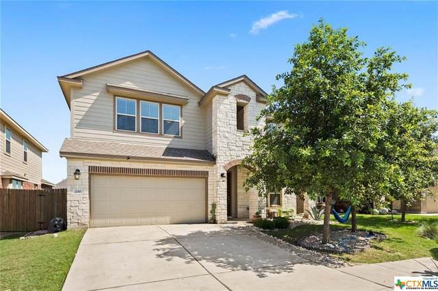 230 Pincea Place, San Marcos, TX 78666 (MLS #411481) :: The Real Estate Home Team