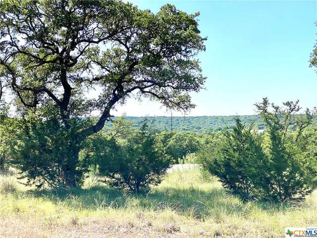 Lot 18 Angelica Vista, Canyon Lake, TX 78133 (MLS #411562) :: Brautigan Realty