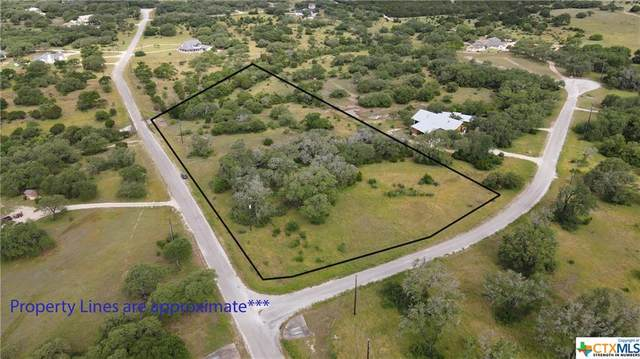 141 Starlight Trail, Wimberley, TX 78676 (MLS #411731) :: The Real Estate Home Team