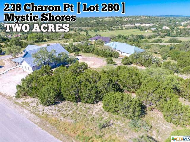 238 Charon Point, Spring Branch, TX 78070 (MLS #411783) :: The Zaplac Group