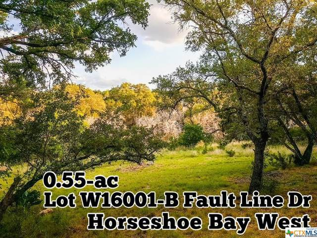 W16001-B Fault Line Drive, OTHER, TX 78657 (MLS #411896) :: RE/MAX Family