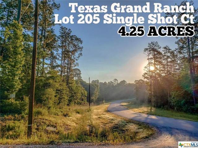 Lot 205 Single Shot Court, Huntsville, TX 77340 (#411920) :: First Texas Brokerage Company