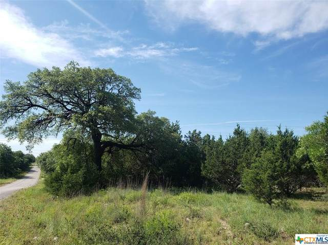 TBD County Road 1045, Lampasas, TX 76550 (MLS #411935) :: The Real Estate Home Team
