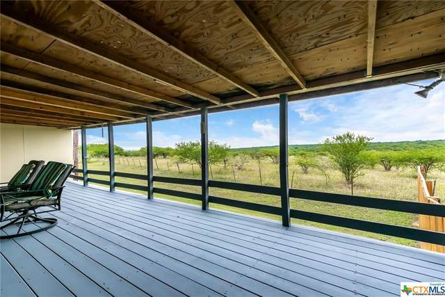 696 Stag Horn Pass, Kyle, TX 78640 (MLS #412081) :: The Zaplac Group