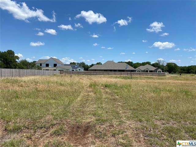 123 Cumberland Drive, Belton, TX 76513 (MLS #412105) :: The Zaplac Group