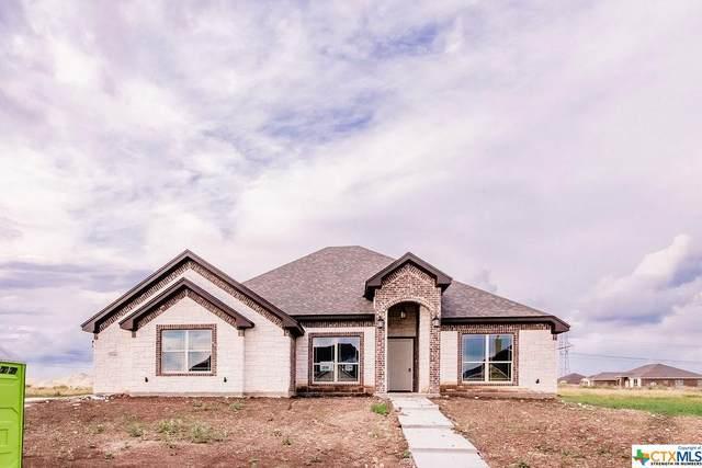 7136 Day Drive Drive, Salado, TX 76571 (MLS #412143) :: Berkshire Hathaway HomeServices Don Johnson, REALTORS®