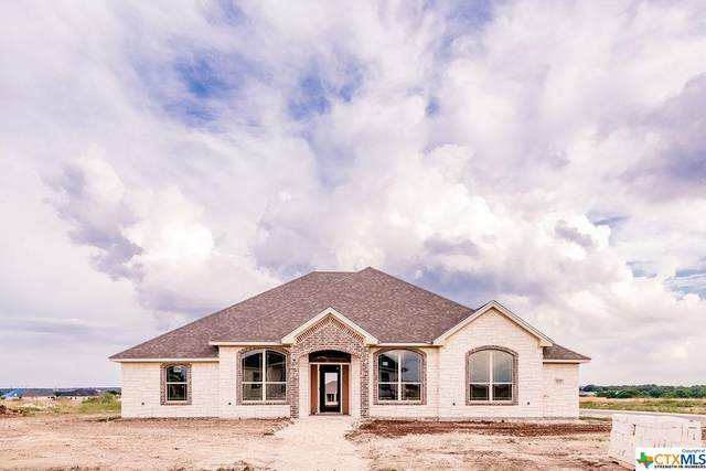 6100 Big Tree Drive, Salado, TX 76571 (#412152) :: All City Real Estate