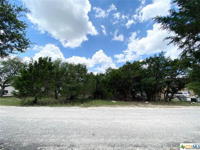 5 Caliche Court, Wimberley, TX 78676 (MLS #412218) :: Kopecky Group at RE/MAX Land & Homes