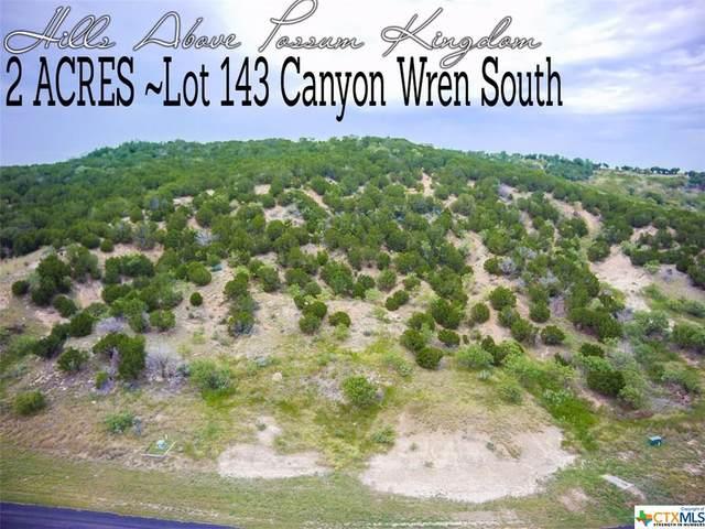 Lot 143 S Canyon Wren Loop, Graford, TX 76449 (#412255) :: First Texas Brokerage Company