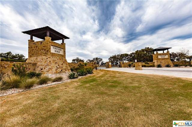 9 Thriving Oak Drive, Fredericksburg, TX 78624 (MLS #412550) :: Kopecky Group at RE/MAX Land & Homes