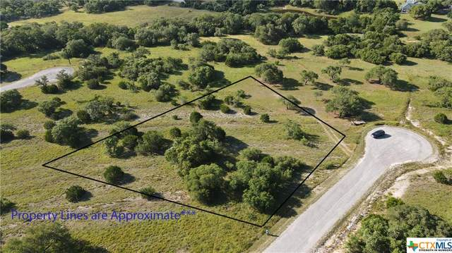 105 Thomas Frost, Blanco, TX 78606 (MLS #412596) :: Berkshire Hathaway HomeServices Don Johnson, REALTORS®