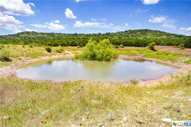 Lot Fm 1113, Copperas Cove, TX 76522 (#412621) :: Realty Executives - Town & Country