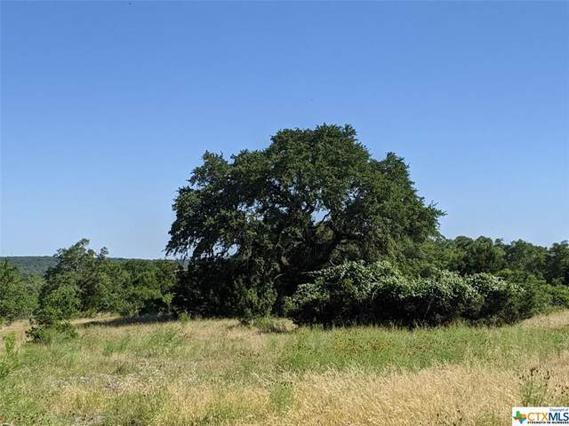1958 Rothschild, New Braunfels, TX 78132 (MLS #412687) :: The Zaplac Group