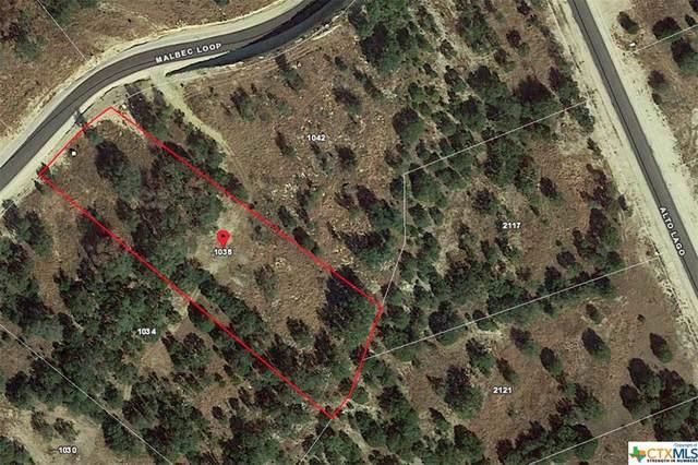 1038 Malbec Loop, Canyon Lake, TX 78133 (#412938) :: All City Real Estate