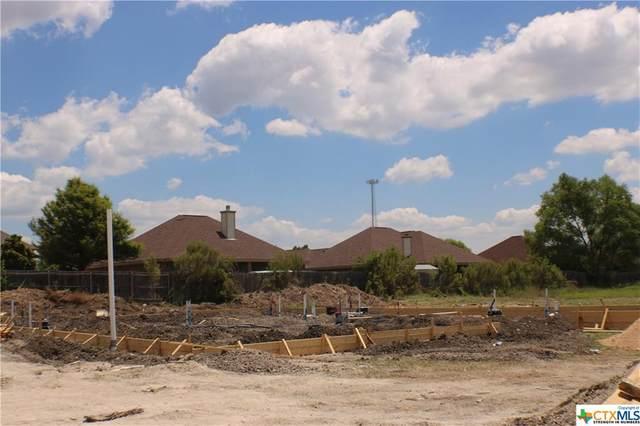 219 Slippery Elm Drive, Nolanville, TX 76559 (MLS #413011) :: Isbell Realtors