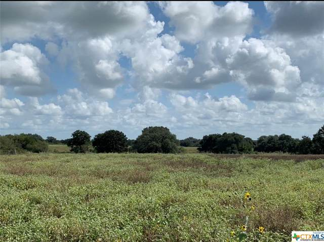 4131 SW County Road 121, Nixon, TX 78140 (MLS #413113) :: RE/MAX Family