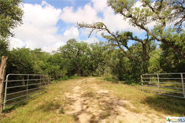 678 N Fort Street, Goliad, TX 77963 (MLS #413260) :: RE/MAX Land & Homes