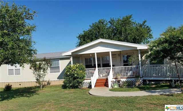 15498 N Highway 80, Leesville, TX 78122 (MLS #413488) :: Brautigan Realty