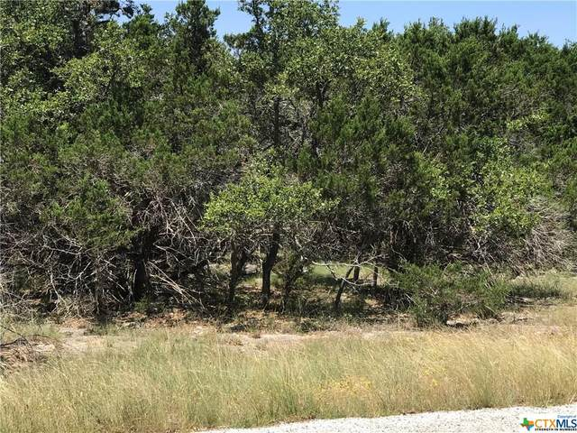 1984 Cattail, Canyon Lake, TX 78133 (MLS #413924) :: The Zaplac Group