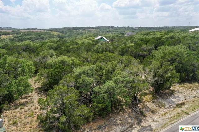 422 Cielo Vista, Canyon Lake, TX 78133 (MLS #413942) :: The Zaplac Group