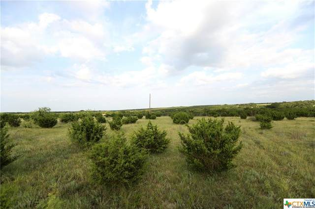 TBD Cr 2080, Lometa, TX 76853 (MLS #413961) :: Kopecky Group at RE/MAX Land & Homes