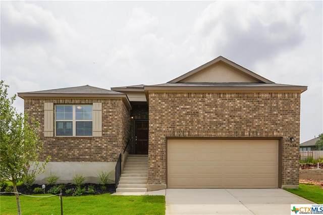 22142 Akin Path, San Antonio, TX 78261 (#414143) :: All City Real Estate