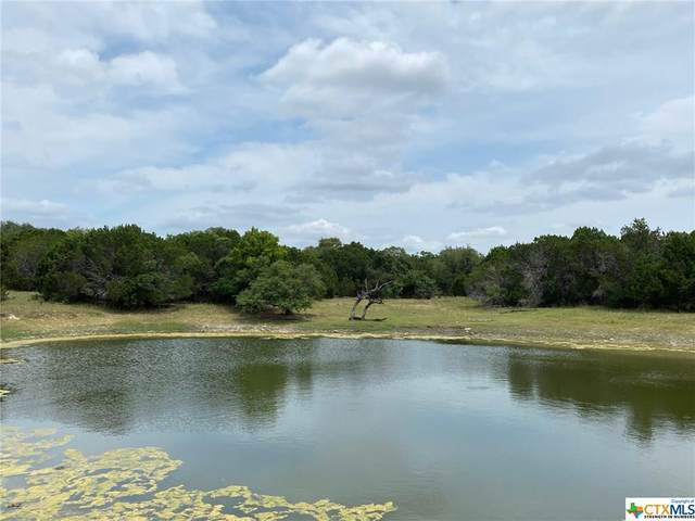 TBD Lot 11 Mill Creek Ranches Private Rd 4717, Kempner, TX 76539 (MLS #414192) :: The Real Estate Home Team