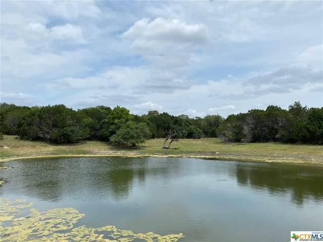 TBD Lot 11 Mill Creek Ranches Private Rd 4717, Kempner, TX 76539 (MLS #414192) :: Brautigan Realty