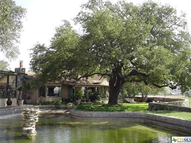 1668 Rocky Road, Blanco, TX 78606 (MLS #414352) :: Berkshire Hathaway HomeServices Don Johnson, REALTORS®