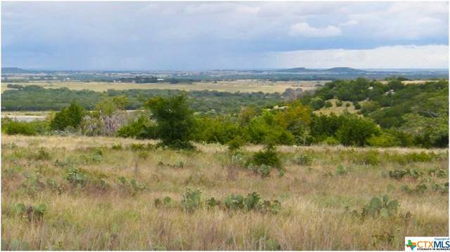 TBD Ranch Road 108, Lampasas, TX 76550 (MLS #414382) :: The Real Estate Home Team