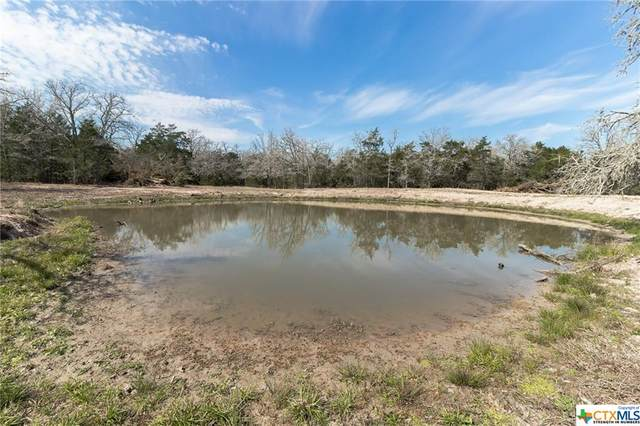 003 Old Waelder Road, Flatonia, TX 78941 (MLS #414456) :: The Real Estate Home Team
