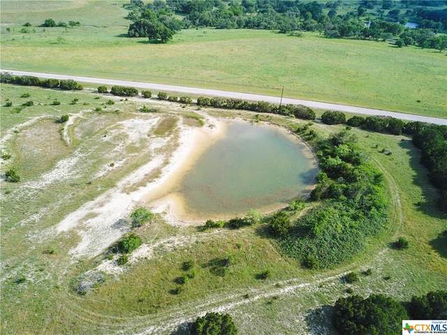 TBD-9 Fm 1241, Evant, TX 76566 (MLS #414606) :: The Zaplac Group
