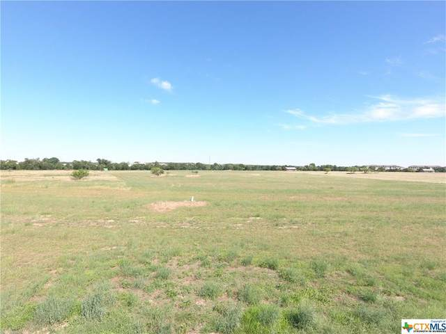 Tract 2 (20.04 Acres Post Road, San Marcos, TX 78666 (MLS #414631) :: Kopecky Group at RE/MAX Land & Homes