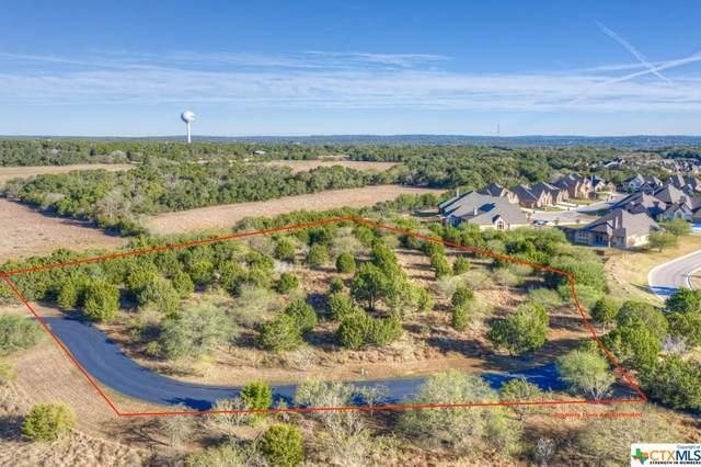 816 Ayers Rock, New Braunfels, TX 78132 (MLS #414805) :: Vista Real Estate