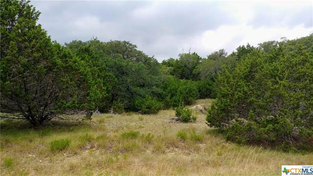 1444 Stallion Springs Drive, Fischer, TX 78623 (MLS #414947) :: Kopecky Group at RE/MAX Land & Homes