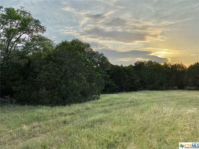 5924 County Rd 142, Gatesville, TX 76528 (MLS #415013) :: Brautigan Realty