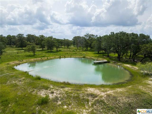 00 County Rd 429, Stockdale, TX 78160 (MLS #415148) :: Kopecky Group at RE/MAX Land & Homes