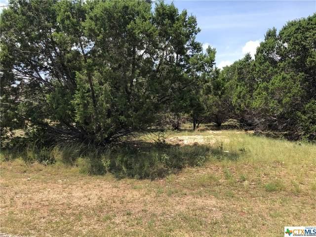 1745 Blueridge Drive, Canyon Lake, TX 78133 (#415154) :: First Texas Brokerage Company