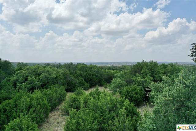 611 Cielo Vista Vista, Canyon Lake, TX 78133 (MLS #415251) :: The Zaplac Group