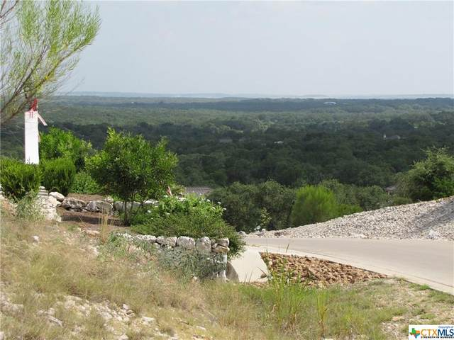 5790 Copper Valley, New Braunfels, TX 78132 (MLS #416341) :: The Zaplac Group