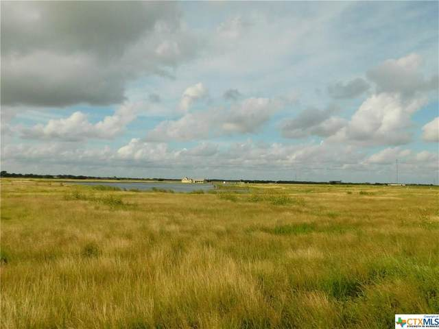 Lot 86 Wind Swept Point, Port Lavaca, TX 77979 (MLS #416404) :: The Zaplac Group
