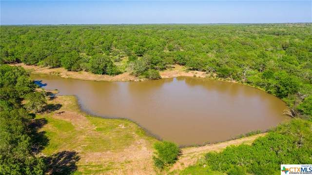 009 Old Seguin Luling Rd, Seguin, TX 78155 (MLS #416479) :: The Myles Group