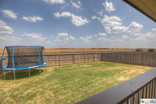 742 Wolfeton Way, New Braunfels, TX 78130 (#416538) :: All City Real Estate