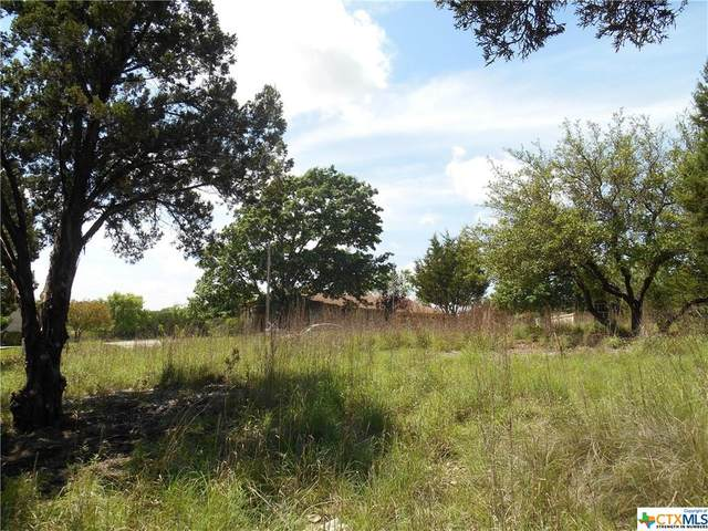 3605 Bunyan Circle, Lago Vista, TX 78645 (MLS #416559) :: The Real Estate Home Team