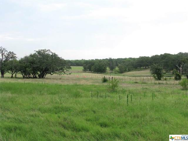 540 Fm 183, Evant, TX 76525 (MLS #417131) :: The Zaplac Group