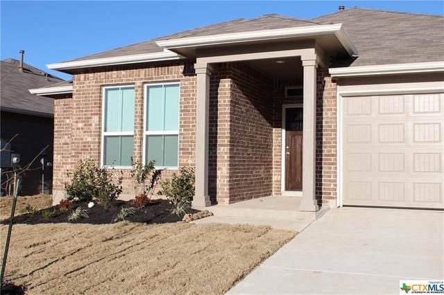 446 Moonvine Way, New Braunfels, TX 78130 (MLS #417302) :: The Real Estate Home Team